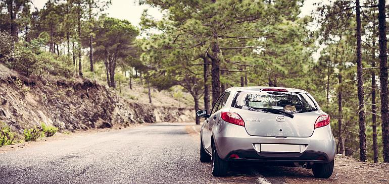Sfaturi pentru condus ecologic